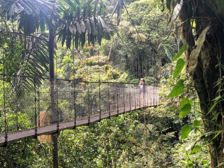 asavoryplanet_costarica_hangingbridges